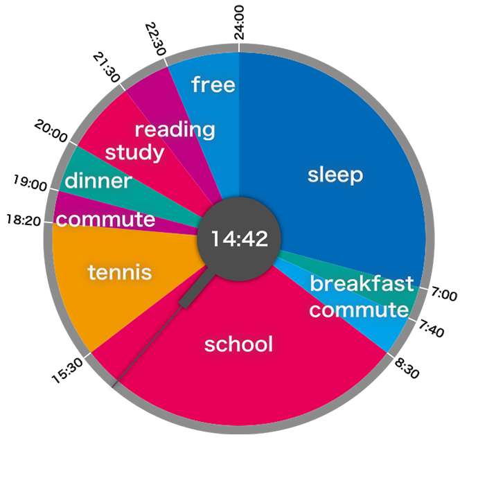 daily schedules in a pie graph
